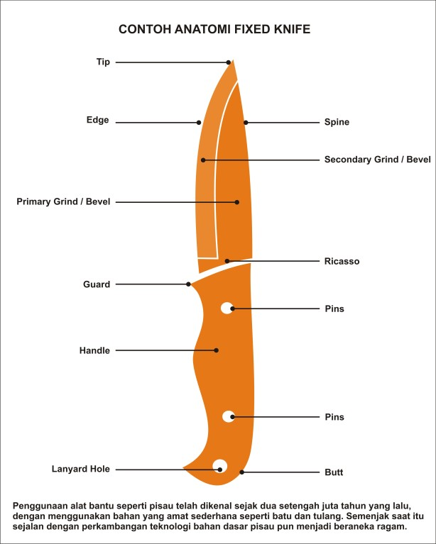 Anatomy of knife 02